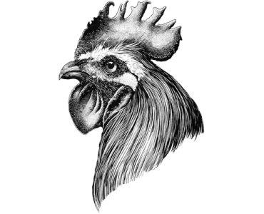 Rooster-1.png